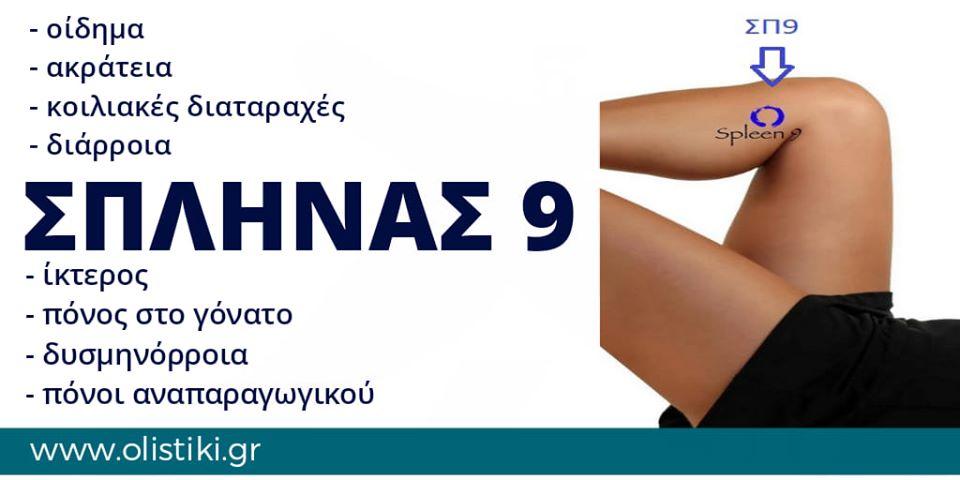 ΣΠΛΗΝΑΣ 9